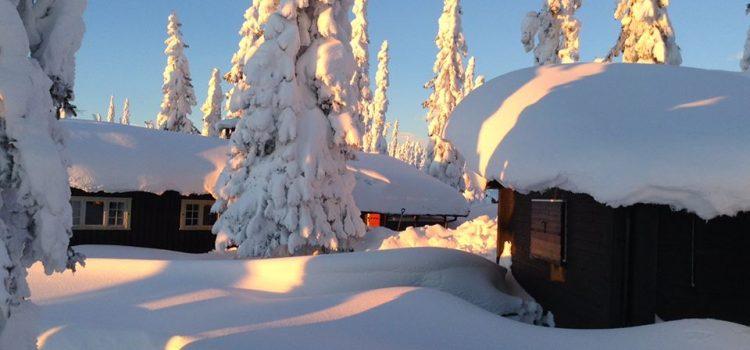 Älska vinter
